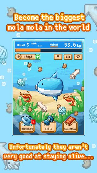 Survive Mola Mola
