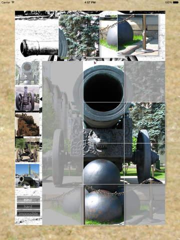 Cannon Puzzle