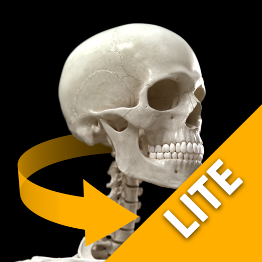 Skeletal System 3D Atlas of Anatomy Lite