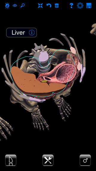 Zygote 3D Anatomy Atlas Dissection Lab