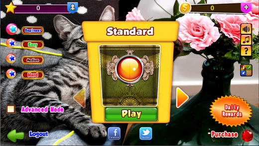 Bingo Cats Game