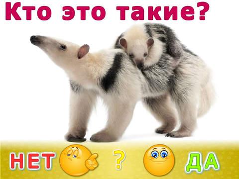 Животные для детей! LITE. Развивающие игры для малышей. Детская игра: детский сад (малыш, ребенок, мальчик, девочка 2, 3, 4 года)