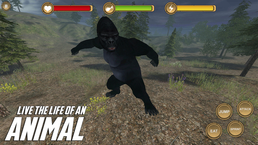 King Kong Simulator HD Animal Life