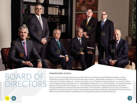 Ayala Annual Report 2013