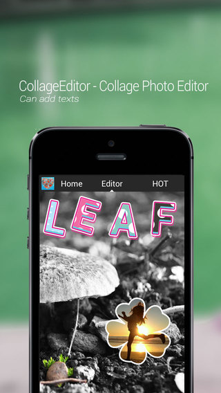 CollageEditor - Shapes and Effects