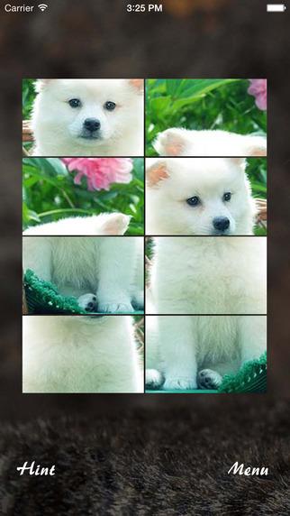 Pet Animal Jigsaw Puzzle