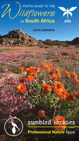 Wildflowers of South Africa - a photographic nature guide to identify SA flowers