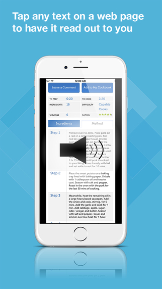 Echo Browser