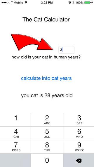 The Cat Calculator