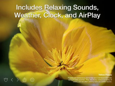 Screenshot #3 for Magic Flowers - Visual Healing