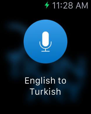 Turkish English Dictionary & Translator iPhone Screenshot 6