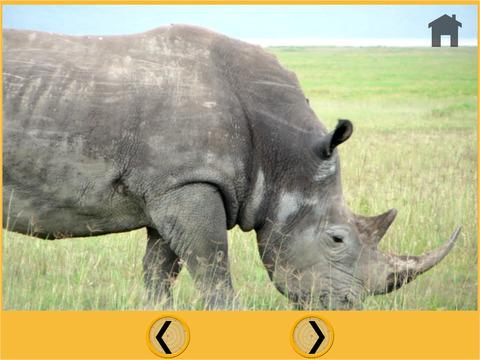 jungle animals bowling for kids vip iPad Screenshot 5