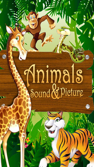 Animals Picture Sound Pro