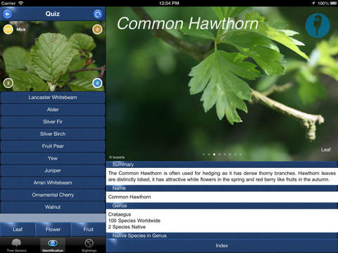 TreeId - The British Tree Identification Guide iPad Screenshot 4