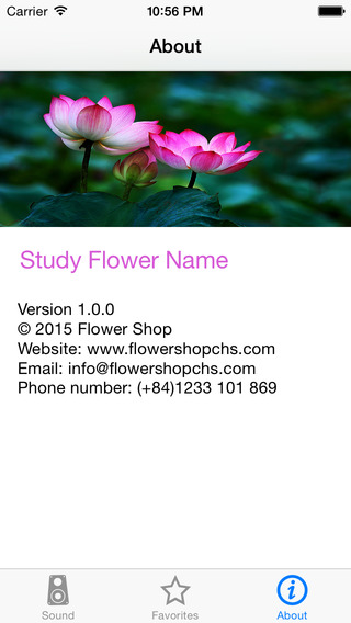 Free Study Flower Name from FlowerShop Online
