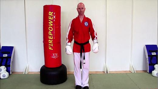 Purple Belt Kick Jutsu