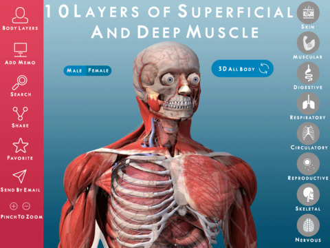 Human Anatomy 3D : Premium Reference for Students and Healthcare Professionals