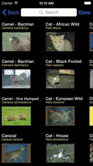 Mammals of Africa - eMammalsA iPhone Screenshot 3