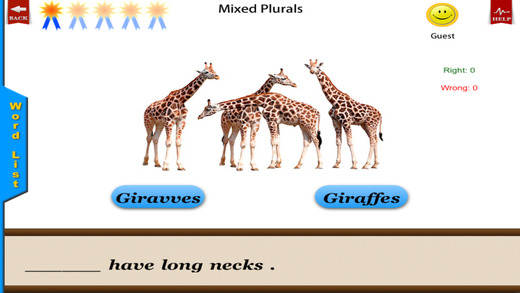Irregular Plurals - English Language Art Grammar A