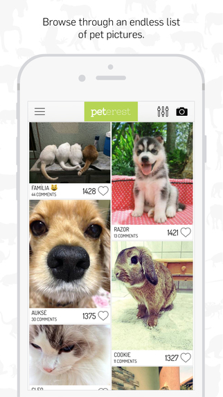 Peterest - Pet Photo Gallery