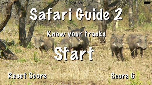 Safari Guide 2