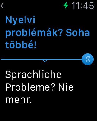German Hungarian Dictionary & Translator iPhone Screenshot 5