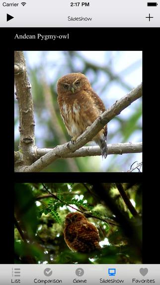 Bird Expert+