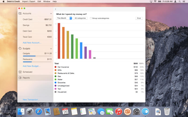 Debit  and  Credit Screenshot - 4