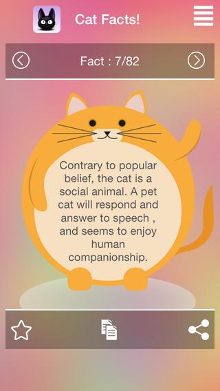 Interesting Random Cat Facts