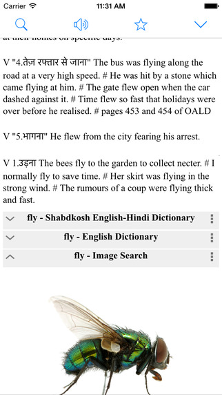 Hindi English Dictionary Box Translator