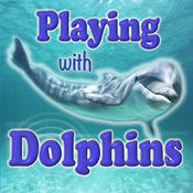 Playing With Dolphins HD