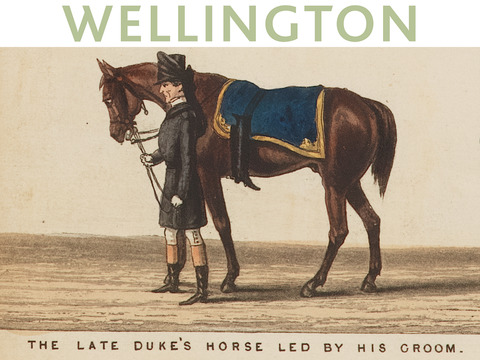 Wellington Funeral Scroll
