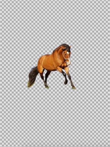 《抠图 : KnockOut - Professional Grade Photo Cutout & Easy Sticker Maker [iOS]》