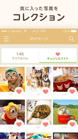 パシャっとmyペット〜可愛いペットの写真共有SNS〜