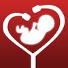 Matis inc. - My Baby's Beat - Hear baby heartbeat sound artwork