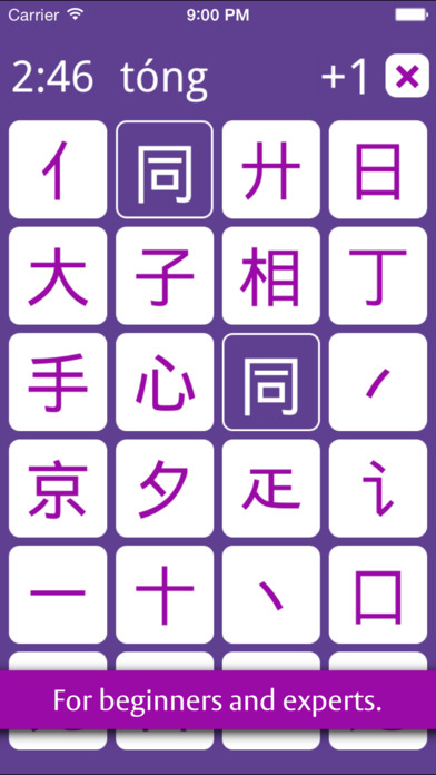 Pinzi - Chinese Character Puzzle Screenshots