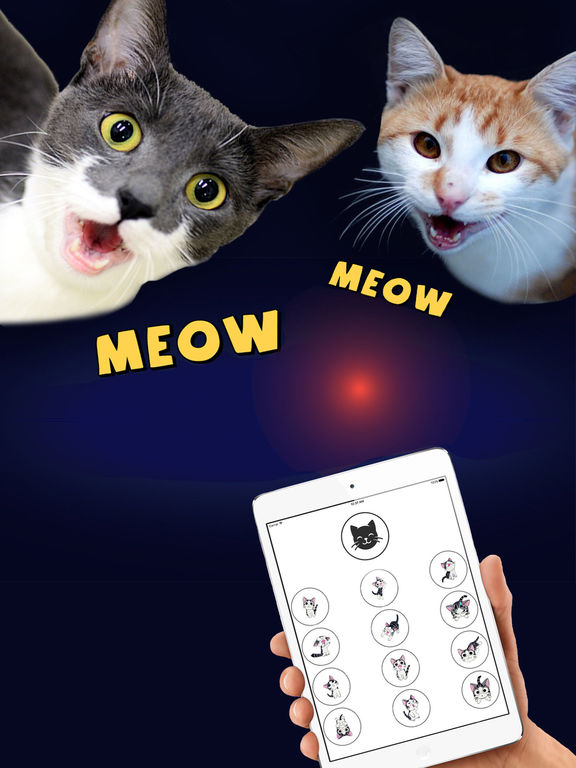 Cat Translator Deluxe - Talk to your Cat Screenshots