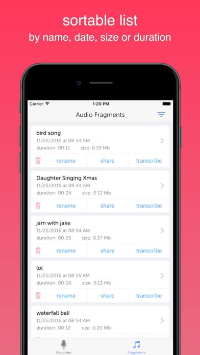 Instant Audio Recorder iPhone Screenshot 3