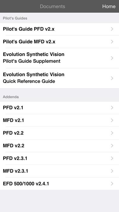 Flying the Aspen Evolution iPhone Screenshot 2