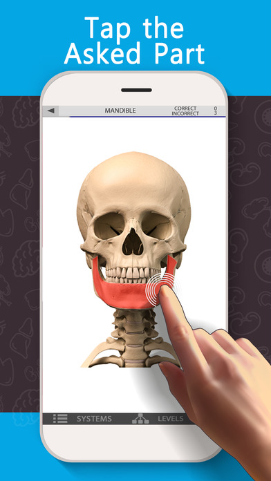 Anatomy Game Anatomicus Screenshots