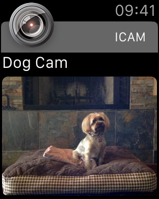iCam - Webcam Video Streaming iPhone Screenshot 4