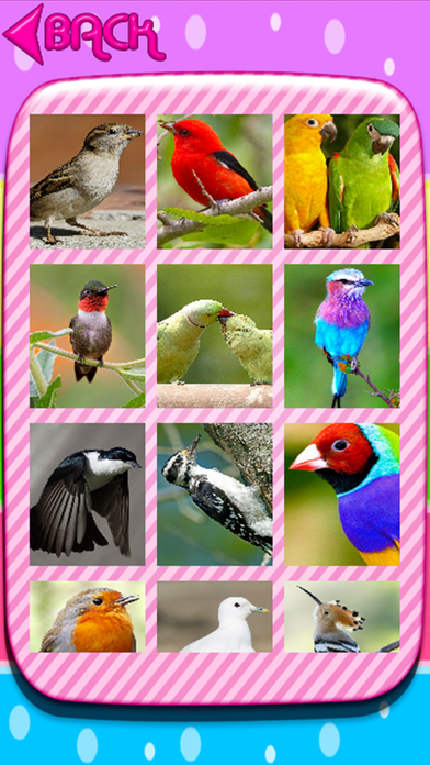 birds puzzle jigsaw screenshot 2