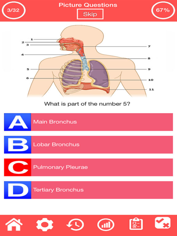 the respiratory system practice questions The primary stimulus or stimuli for the respiratory center is/are ______ a), carbon dioxide and hydrogen ions b), oxygen gas levels in the blood c), oxygen gas levels in the hemoglobin d), conscious feeling for the need for more oxygen 40 the respiratory center is directly affected by low oxygen levels a), true b), false.