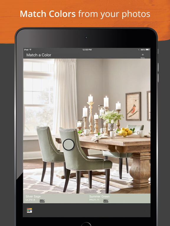 Color project app from home depot