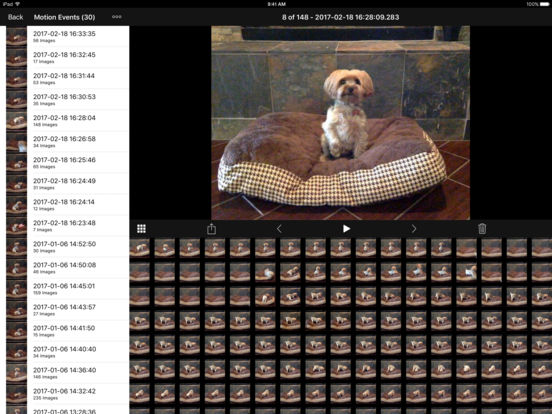 iCam - Webcam Video Streaming iPad Screenshot 3
