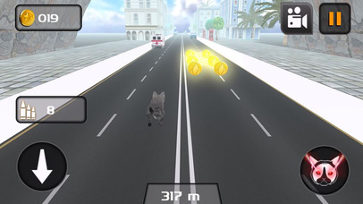 Kitty Cat Rush 3D Game screenshot 3