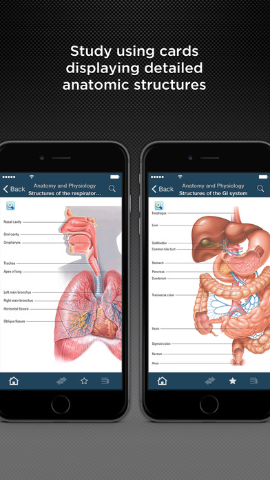 Where can i get free accessible sites on Physiology and anatomy.?