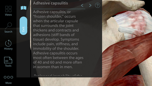 Muscle Premium - 3D Visual Guide for Bones, Joints & Muscles - Human Anatomy & Kinesiology Screenshots