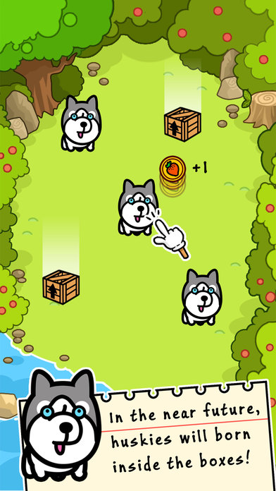 Husky Evolution - Tap Coins of the Crazy Mutant Simulator Idle Game-0