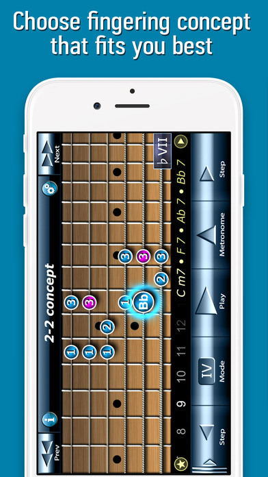 Bluesman Guitar Scales iPhone Screenshot 3